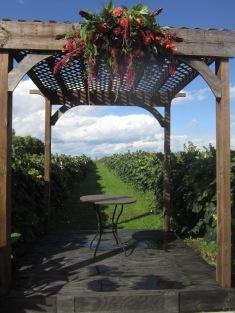 Wedding Flowers at Becker Farms Buffalo NY