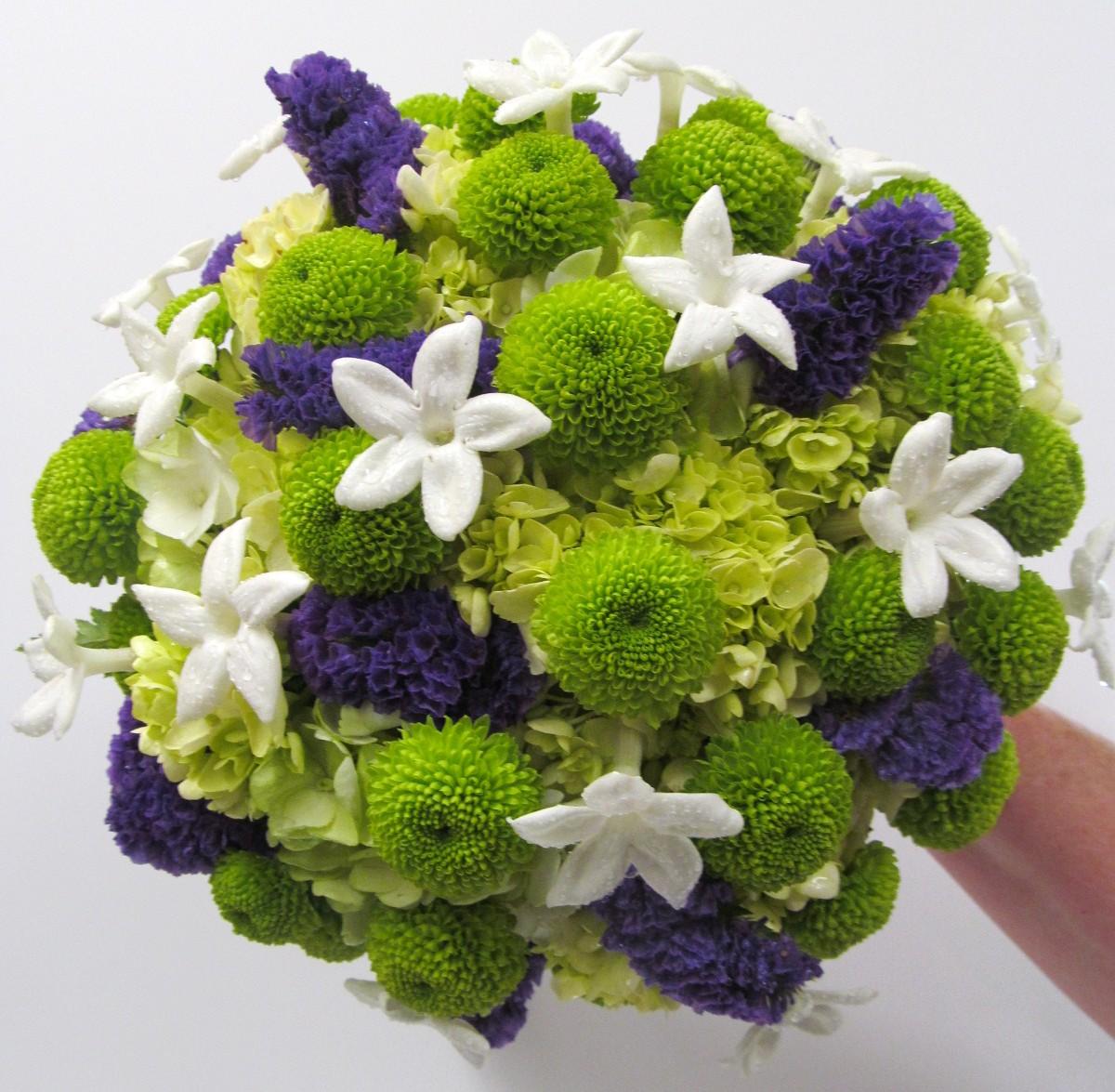 Lime Green Bridal Flowers : Chrysanthramum november flower of the month buffalo