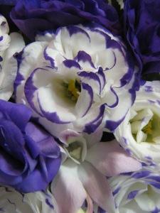 lavendar purple (10)